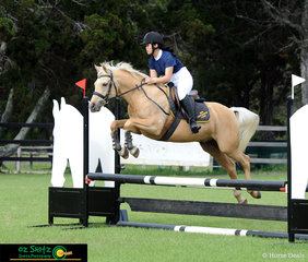 Cheuralea Golden Saidii the partbred Arabian and Hailey Wang compete in the 70cm together at the Cabarita Spring Show Jumping Classic.
