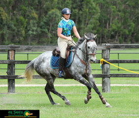 Elizabth Boneham had two horses at Cabarita for the weekend, this one her 6 year Thoroughbred Min Min Taxi in the 80cm on Sunday.