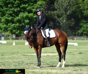 Enjoying the Armidale sun was Alec Macintosh and Harry as they complete their dressage test in the EvA60 Open competition at the NEGS ODE.
