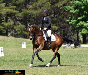 Amanda Newton rides Wundurra Revelation's elevated canter in the dressage phase of the EvA80 at the NEGS ODE in Armidale, NSW.