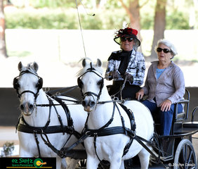 NEGS ODE isn't just about the Dressage, Show Jumping or Cross Country, at the 45th Anniversary Celebration they had a carrage driving display, with the founder of NEGS, Zita Denholm.