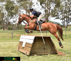 Nathaniel Phillis and Prophet, navigated their way around the EvA105 cross country course at the annual NEGS One Day Event in Armidale.