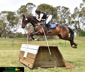 Alexandra Kelley and Scathing Rumours fly over fence 15 with ease in the EvA105 at the NEGS One Day Event.