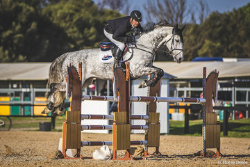 Billy Raymont (Qld) and Bluecon NZPH showing how it's done in the Speed 120cm - Table C, they took out the event with a hot time of 66.57 (4 pens) from Airlie Robinson Victoria's speed queen on Yalambis Corlandia.It was a real lesson in line, length and speed. Between fences 11 and 12 Billy turned the 10-11 strides taken by the rest of the field into 9!