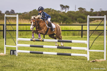 Hannah Bokanovic and her handy pony Junar Eclipse in the Primary School 80cm.