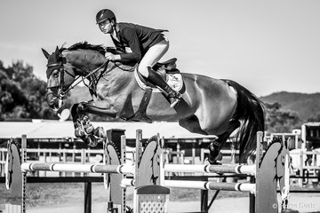 Tom McDermott and Alpha Activity taking good air placed 4th in the 2018 Horseware Boneo Cup,Alpha Activity is by Animate out of the mare Alice, an Aggasi horse.