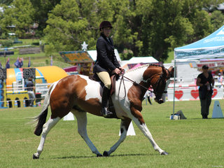 Jeromes Enigma and Larissa Booth winning thesmall Hunter Hack