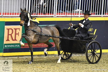 Adam Bouaird drove the Bent Farms Ltd, 'Dark Shadows' to take out the $2000 Hackney Harness Pony Canadian Reserve Championship.