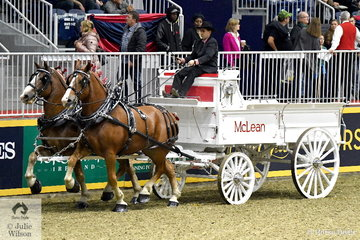 Scott McLean drove the McLean Stables' pair of Belgian Draught Horses to win the class for Belgian Two Horse Draft Team.