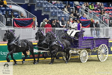 The Rapids Percherons nomination owned by the Deer Family and driven by Justin Hille took second place in the class for Percheron Unicorn Hitch.
