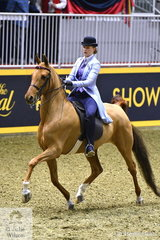 Catherine Ploughman rode David Ploughman's Saddlebred, 'WS Our Dresden Doll' to seventh place in the Thursday edition of the Royal Battle of the Breeds.