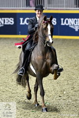 Miller Young Fina is pictured aboard Jessica Mann Baker's Morgan Horse, 'Maximum Velocity' high stepping it out of the arena after winning the Thursday edition of the Royal Battle of the Breeds'.