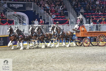 The Six Horse Clydesdale Hitch competition was impressive. Six teams of six horses entered the arena and the Carson Farms nomination, driven by James Kuepfer emerged the winners of this impressive class.