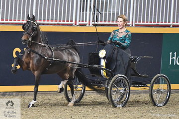 The Bent Tree Farms nomination, the 18 year old, 'Sweetheart of Success' driven by Karen Waldron took the Reserve in the $1500 Single Harness Pony Amateur Championship.