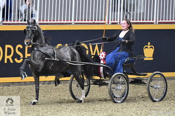 Margo Gerrish drove her own and Nathan Gerrish's, 'The Prophet' to claim the $1500 Single Harness Pony Amateur Championship.
