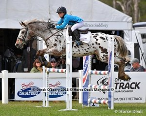 """The very distinctive """"Mobile App"""" ridden by Zoe Waller in the The Australian Children's Championship"""
