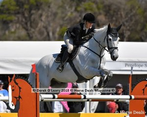 "Melissa Backman placed 9th in the Australian Mini Prix Championship riding ""Blackall Park Coloe"""
