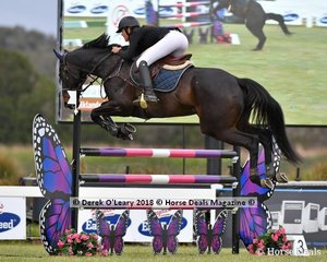 Victoria Hoy from NSW rode Falklands (OTT) to place 10th in the Australian Junior Championship