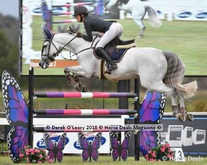 Amelia Douglass from NSW rode Upper Class Z in the Australian Junior Championship