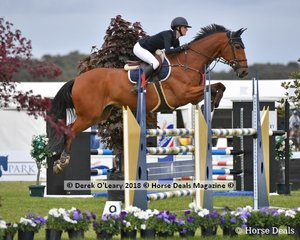 """Jessie Rice-Ward from NSW rode """"Dusky Farm Cavalier"""" to place 8th in the Australian Junior Championship"""