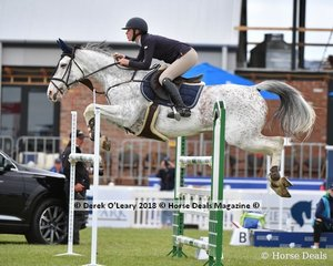 2nd Place in the Australian Junior Championship went to Sophie Hatch from NSW riding Rosthwaite Belvedere