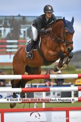 "Amelia Douglass from NSW riding ""Sirius Du Granit"" placing 12th in the Australian Young Rider Championship"