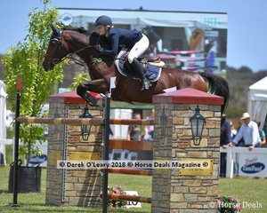 """Brooke Langbecker from QLD rode """"Beijing LS La Silla"""" to place 2nd in the Australian Young Rider Championship"""