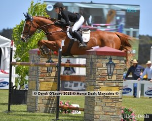 """Madeline Sinderberry from NSW placed 4th in the Australian Young Rider Championship riding """"Oaks Kosmo"""""""
