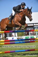 """Clem Smith from QLD in the Austrlian Senior Championship riding """"Alite"""" placing 9th"""