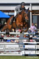 """Katie Laurie from New Zealand had a great week pictured here riding """"Esteban MVNZ"""" placing 4th in the Australian Senior Championship"""