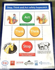 """There is a wonderful Youth Education programme initiated by the Guelph University Equine department focusing on safety around horses. On the facing page illustrations of horses with ears back, forward, swishing tails etc and the students are asked to match the correct description with the illustration. EG """"annoyed"""", """"relaxed"""" etc. They have a great website; www.Thehorseportal.ca/equimania"""