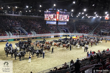 The magnificent sight of ten Six Heavy Horse Hitch entries in the  Coco Cola arena at Toronto.