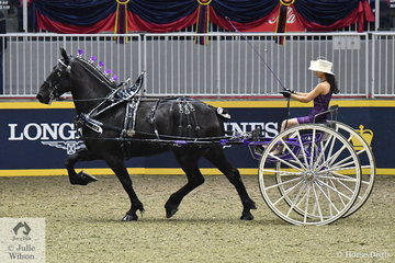 Hannah Deer drove the  Deer Family's Rapid Percherons nomination to claim the Lady's Heavy Horse Cart Reserve Championship.