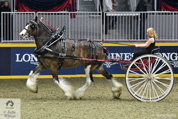 Amber Geiman drove Rick and Donna  Farrows Resting Spirit Stables' Clydesdale nomination to take third place in the Lady's Heavy Horse Cart Championship.