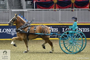 Marilou Montambeault drove Pierre Gagnon and the Pro Motion Belgian Draught nomination to take fourth place in the Royal Lady's Heavy Horse Cart Championship.