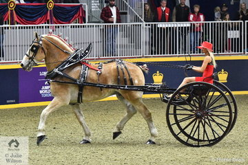 The Willowdale Farms/McLean Stables Belgian Draught nomination is pictured during the Royal Lady's Heavy horse Cart Championship.