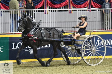 Nicole Honsberger drove the All Star Farms and Doyle and Renee Dingman Percheron nomination to claim the Royal Lady's Heavy Horse Cart Championship.