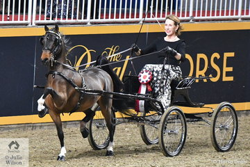 Karen Waldron drove the Bent Tree Farm's nomination, 'Steely Dan' to claim the $5000 Single Harness Pony Canadian Championship.