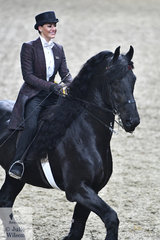 Kirby Tapper rode Kristen Dellac Croce's big Friesian, 'Oxalis Fan'e Tsjonger' to take fourth place in the final of the Open Saddle Seat Battle of the Breeds.