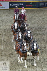 On the final night of The Royal there was a spectacular drive off of ten teams of six heavy horses, Clydesdales, Percherons and Belgian Draughts. David and Margo Carson's, Carson Farms nomination of six Clydesdales took fourth place in a very strong Championship.