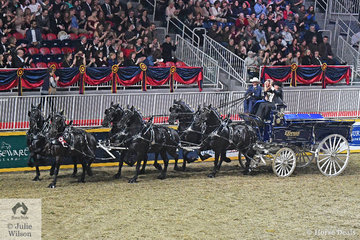 Bob Funk's team of Express Ranches Percherons have had a successful show and driven by Josh Minshull they took out the $25,000 Royal Six Horse Hitch Championship. Interestingly, Percherons make up 75% of the purebred heavy horses in North America.