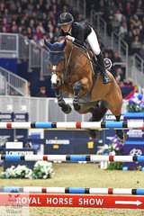 USA based UK rider, Amanda Derbyshire rode the Irish Sport Horse, 'Roulette BH' by Moschino to post a good double clear to take fourth place in the  $205,000 Longines FEI Jumping World Cup Toronto.