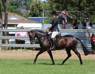 Champion ridden allbreeds Pony Farleigh Anastasia riden by Kirsty Harper Purcell