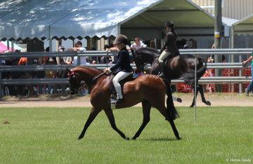 Champion Junior boy Rider Darby Humphries