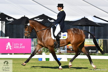 2018 WEG Team member, Shane Rose rode his own and Soigne Jackson's, 'Ultimate Velocity' by Warrego Collateral Damage to hold third place after the dressage phase of the RM Williams CIC 3 * with 35.70.