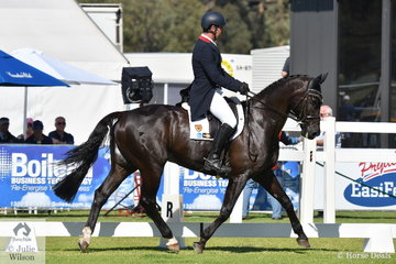 International rider and well traveled Tim Boland from NSW rode the Waratah Equestrian nomination, 'Napoleon' by APH Spiegel to hold  fifth place a on 36.60 after the dressage phase of the RM Williams CIC 3 *.