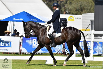 Successful eventing and dressage rider Deon Stokes holds second place after the dressage phase of the RM Williams CIC 3 * with 33.70 riding  his own, 'Koyuna Levi' by Koyuna Genisis.