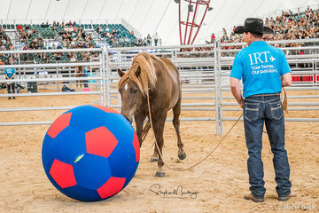 Bruce O'Dell and his 'magic ball' in the arena with 'MCM Kubla Khan'