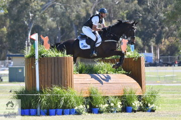 Always a clasa act to watch across country, Olympic Gold Medallist, Stuart Tinney added just  3.6 cross country time penalties to his dressage score to head in to the final jumping phase tomorrow in seventh place riding his own and Karen Tinney's, 'Leporis' by Lasino out of a Heraldic mare.
