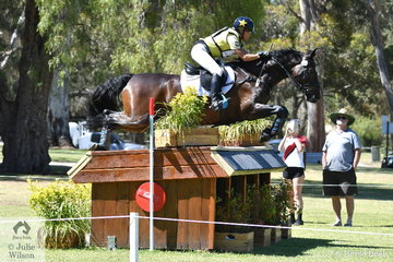 Amanda Ross holds fifth place in the  Horseland CCI 2* riding her own and Fraser and Chrissy Brown's Donautrum gelding, 'Dondiablo'.